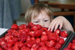 nberries